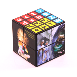 East Sheen Cube 2x2 (bedrukte stickers)